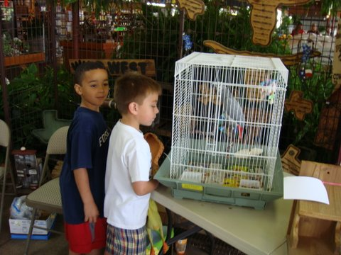 Bird lovers of all ages.