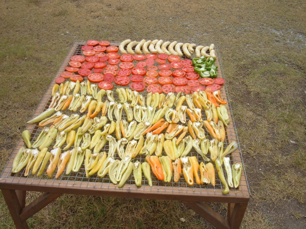 Drying Vegetables for the birds